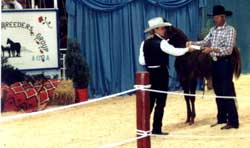 Larry and Royals Danni Leigh x Royal Three Charge winning  the 1999 MBG Sale Halter Futurity
